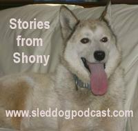 "Story 1 – Stories from Shony – ""The Beginning"""
